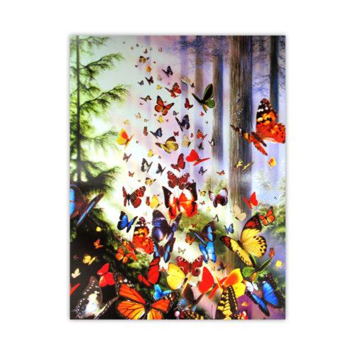 Leanin' Tree Butterfly Woods Blank Card