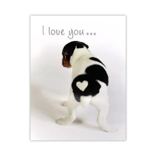 Leanin' Tree Puppy Love Card